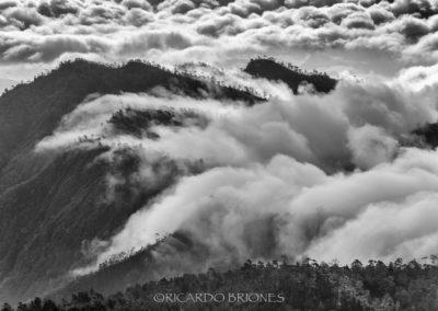 Al Sur desde Alto Bandera - Ricardo Briones