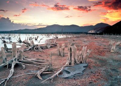 Atardecer orilla del Lago Enriquillo, circa 1997 - Ricardo Briones