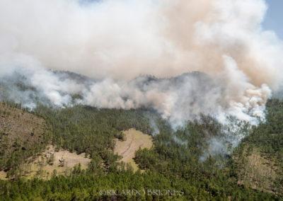 Fuego Valle Nuevo - Ricardo Briones