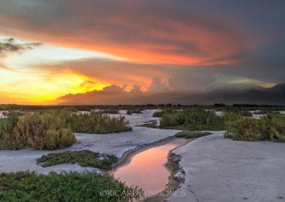La Gran Sabana Neiba- Ricardo Briones