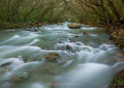 Río Amina, Diferencia - Ricardo Briones