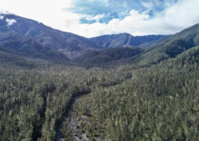 valle del bao